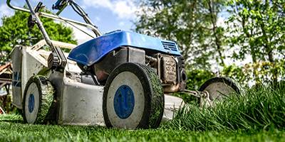 Mowing The Lawn - Gardening Blog