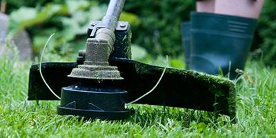 Grass Trimmer - Gardening Blog
